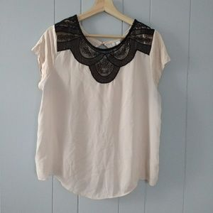 LC Lace Top